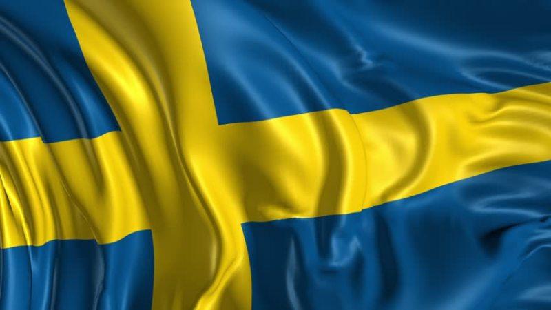 Norrskog and Norra Skogsägarna to merge and form new joint association Norra Skog